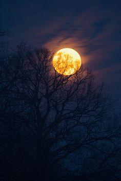 Full moon ... on fire