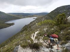 The Overland Track in Tasmania, Australia. It's a 40- to 50-mile-long trail (depending on where you finish) that goes through some of the wildest and most beautiful natural terrain on the planet. Picture of trekkers visiting Cradle Mountain-Lake St Clair National Park on the Overland Track, Tasmania