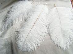 Resultado de imagem para feather