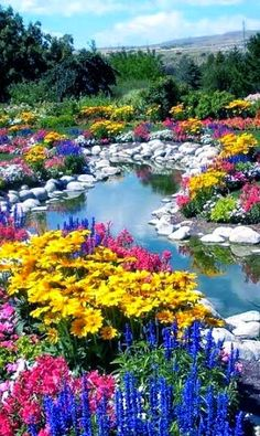 ~ FLOWER LOVE ~