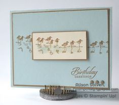 Stampin' Up! Wetlands.        Pool party and baked brown sugar
