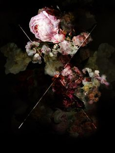 This is not about flowers 3, Isabelle Menin