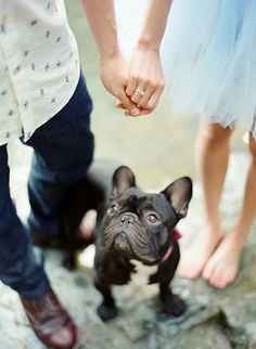 Pet Parents Engagement Photo - Engagement Photo Ideas That Won't Make You Cringe - Photos