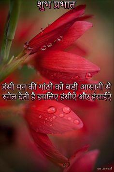 Good Morning Sunrise, Good Morning Msg, Good Morning Roses, Good Morning Picture, Good Morning Messages, Morning Pictures, Morning Wish, Morning Prayer Quotes, Hindi Good Morning Quotes