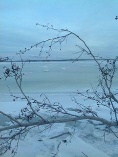 Vinter i norr
