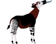 Interactive animation of animals for the American Museum of Natural History Pi Art, Okapi, Car Wash, Natural History, Photo Art, Giraffe, Behance, Museum, Animation