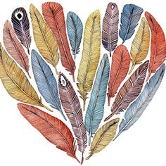Pretty feather drawing