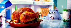 «Не есть после шести вечера»: минусы и плюсы диеты | ElleGirl