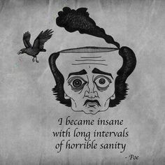 i became insane with long intervals of horrible sanity - poe  [http://the-hipster-in-disguise.tumblr.com/post/17862930022]