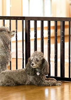 Restrict your pet's access to certain parts of your home without sacrificing style with the 20-inch Freestanding Barrier that is high enough to restrict a small dog, yet low enough to enable you to easily step over.
