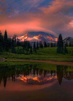 Gorgeous reflection……….Mt. Rainier Sunset - Washington.