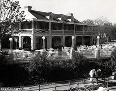 Davelandblog: Disneyland in focus: The Chicken Plantation