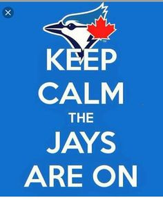 Looking for your next project? You're going to love Toronto Blue Jays Graphgan by designer - via /Craftsy/ Baseball Mom, Softball, Baseball Stuff, Mlb Teams, Sports Teams, Go Blue, Toronto Blue Jays, Looking For Love, Keep Calm