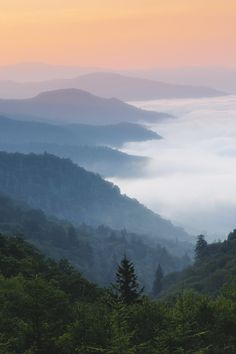 Photo Sunrise in the Great Smoky Mountains by Itai Minovitz on Landscape Photography, Travel Photography, Mountain Photography, Smoky Mountain National Park, Get Outdoors, Appalachian Trail, Great Smoky Mountains, Beautiful World, Beautiful Images