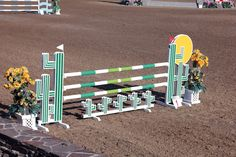ideas painting horse jumping ponies for 2019 Horse Arena, Horse Exercises, Horse Riding Tips, Types Of Horses, Hobby Horse, Horse Tack, Cactus Art, Show Jumping, Show Horses