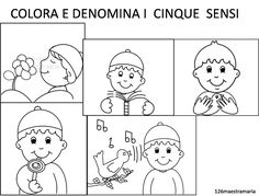 denomina i cinque sensi Summer Camp Activities, Activities For Kids, Social Service Jobs, Visual Dictionary, Language Activities, New Years Eve Party, Kids Education, Pre School, Worksheets