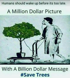 As today is World Environment day i like save for some motivation. Funny Facts, Weird Facts, Environment Quotes, Save Environment, Evolution, Pictures With Deep Meaning, Meaningful Pictures, Tree Quotes, Thoughts