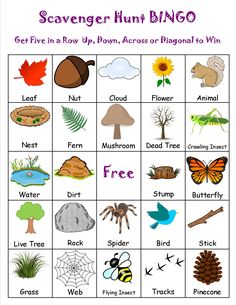 23 free printable bingo games girl scouts nature scavenger h Camping Scavenger Hunts, Outdoor Scavenger Hunts, Nature Scavenger Hunts, Scavenger Hunt For Kids, Camping Bingo, Camping Foods, Camping Survival, Nature Activities, Camping Activities