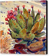 Flowering Opuntia Canvas Print