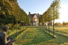 Simplicity and Meadows - Nicholsons Garden Design