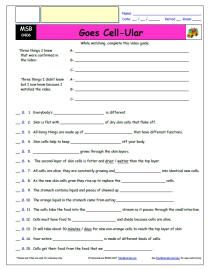 Free Differentiated Worksheet For The Magic School Bus Goes Cell Ular Episode Free Differentiated Wor Magic School Magic School Bus Elementary Worksheets