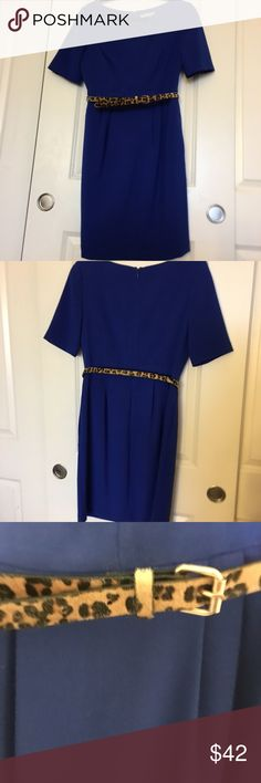Eliza J royal blue belted dress *pockets!* I really love this dress and it pains me to list it, but I just do not find myself wearing it these days. Worn a handful of times, it's in EUC with no visible flaws. Concealed back zipper, pockets!!, fully lined. Size 8, true to size in my opinion. Eliza J Dresses
