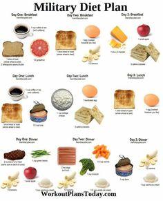 Military diet.