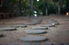 stepping stones - 飛び石