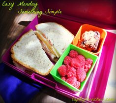 Easy Monday! Something simple and satisfying... Turkey and cheese sandwich on gluten-free bread, raspberries, and a gluten-free chocolate chip blondie. #Bentology #easylunch #funlunch #glutenfree #backtoschool #bts #lunchideas