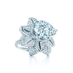 Could I have this diamond ring, please? Tiffany & Co