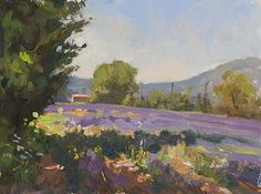 Summer lavender A Daily painting by Julian Merrow-Smith