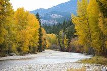 Autumn colors surrounding the river in Washington