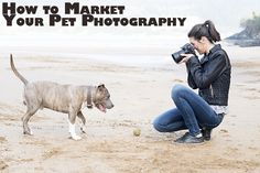 8 Tactics for Marketing Your Pet Photography Business | Backdrop Express Photography Blog