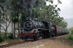 Image result for south african steam
