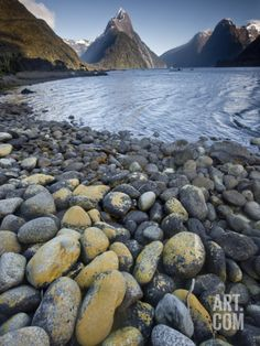 Mitre Peak in Summer, Milford Sound, Fiordland National Park, New Zealand Photographic Print by Colin Monteath/Minden Pictures at Art.com