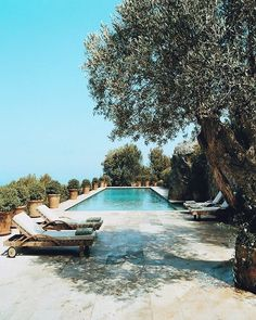 The pool at Celia Forner and Francesco Venturis Majorcan escape is surrounded by jasmine hedges. Luxury Swimming Pools, Best Swimming, Swimming Pools Backyard, Dream Pools, Swimming Pool Designs, Garden Pool, Small Backyard Decks, Backyard Landscaping, Landscaping Ideas