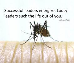 LeadershipFreak - Dan Rockwell - Short, direct posts on all sorts of leadership topics. Often gets his point across with humor. Example: 13 Ways to Spot Energy Draining Blood Suckers -