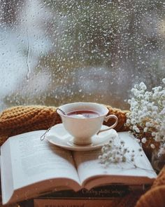 Three of my favorite things in one  picture! Books, a cup of tea and a rainy day. Four if you count watching the rain through a window. (by anna_kostrzewska)
