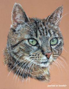 Tom-1-portretinbeeld.jpg 1.305×1.673 pixels
