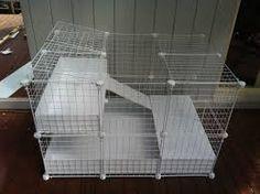Resultado de imagen para hábitat jaula para cuyo