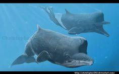 Zygophyseter varolai (cetáceo odontoceto del Mioceno de Italia, 9Ma) (Christopher Chavez)