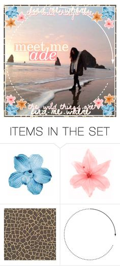 """""""✧; meet me 