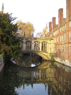 John's College (Cambridge) - 2020 All You Need to Know Before You Go (with Photos) - Cambridge, England Cambridge College, City Of Cambridge, Cambridge England, British College, England Tourism, St Johns College, What To Do Today, Great Britain, Places To See