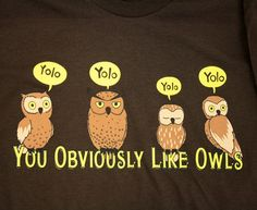 YOLO: You Obviously Like Owls. I will now be using this phrase.