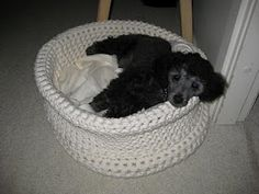 crochet dog bed....I am alllll over this