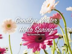 quotes goodbye winter p wikiwear co