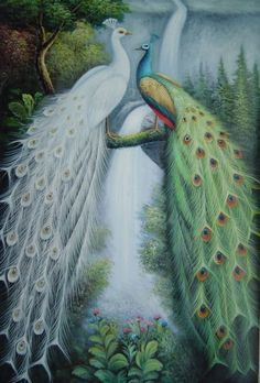 Beautiful Blue and White Peacocks in Front of Waterfall  36x24 Oil Painting  from BeyondDream