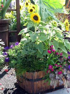 wood planter beautiful flower arrangement - sunflowers