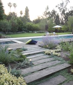 For a Los Angeles home, Aoyagi used an IdealMow lawn of native grasses, and Dymondia, Juncus, and Hummingbird Sage. Courtesy of: Orly Olivier