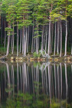 Still Loch, Scotland